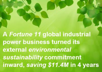 Environmental Sustainability Ambassador Program