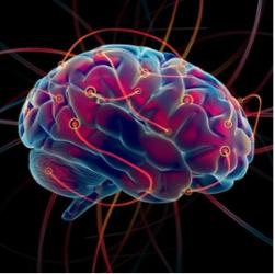 Your Brain on Change